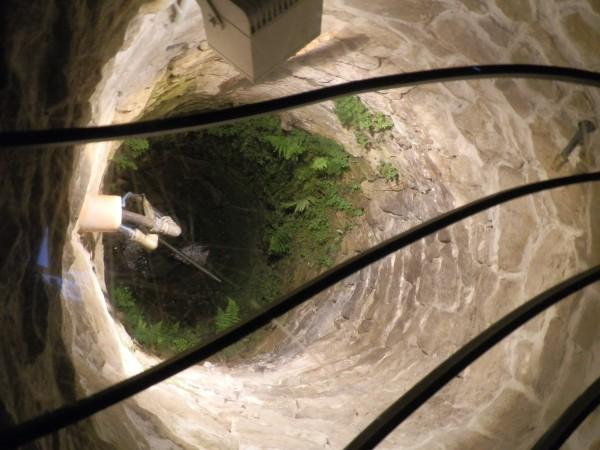 Ein Blick in den Brunnen der Brunnenstube ...